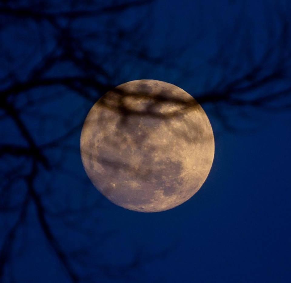 Tudo é festa: Parauapebenses organizam em redes sociais local para prestigiar a super lua