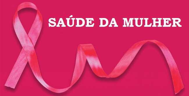 Conselhos e secretarias municipais realizam I Pré-Conferência de Saúde da Mulher