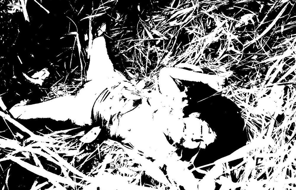 Jovem é encontrada morta, estrangulada e estrupada no bairro São Lucas