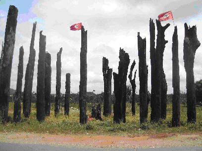 Jovens lembram massacre de Carajás e pedem reforma agrária
