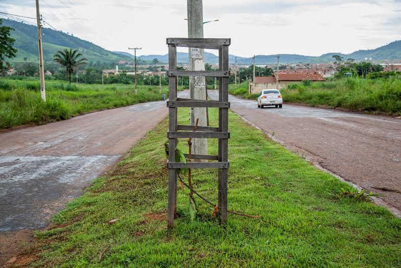 Plantas da avenida do Residencial dos Minérios são arrancadas por vândalos