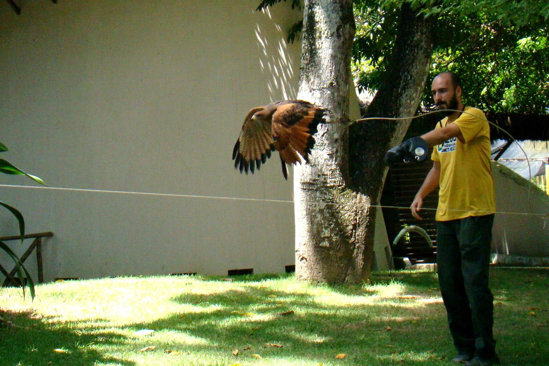 Celpa inaugura centro de reabilitação de animais em Marabá