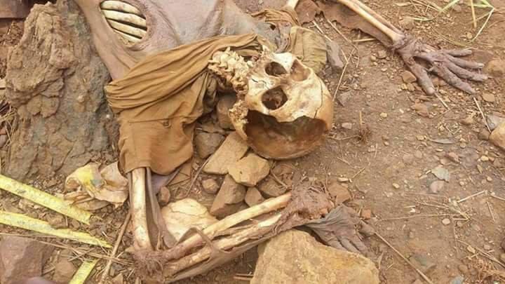 Parauapebas: Ossada humana encontrada na zona rural ainda não foi identificada