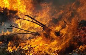 Focos de incêndios triplicam na região de Carajás