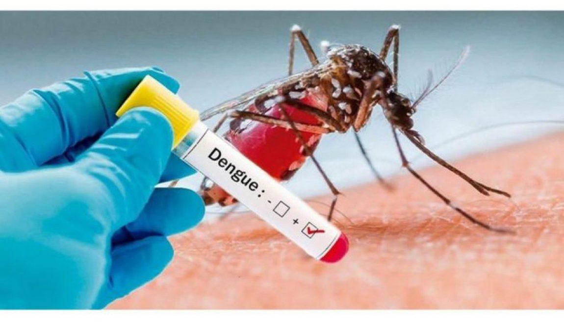 Pará já tem 2.069 casos confirmados de Dengue, segundo Ministério da Saúde