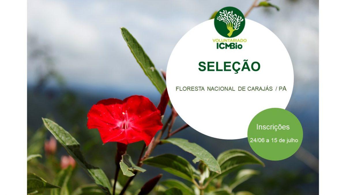 Inscrições abertas para o programa de voluntariado do NGI do ICMBio Carajás