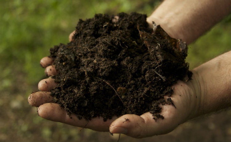 Engenheiro de Parauapebas já transformou mais de 4 toneladas de resíduos em adubo orgânico