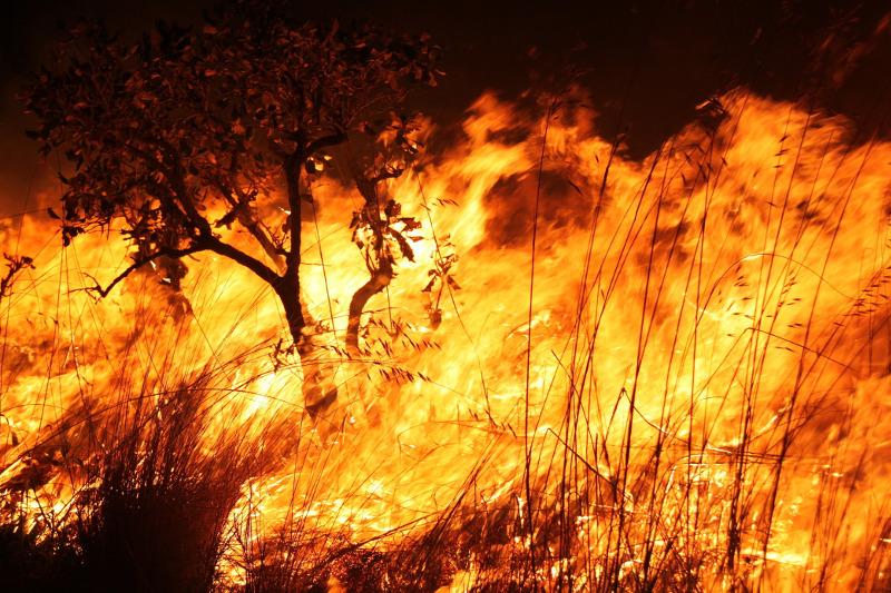 Sem plano de combate, número de queimadas aumenta e população de Parauapebas sofre