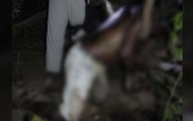 Corpo é achado com mãos amarradas próximo à ponte em Marabá